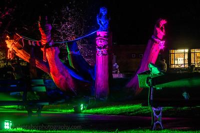 Illuminated Winter Wonderland by night-12