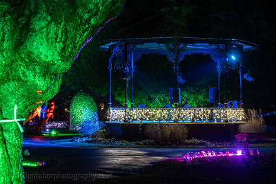Illuminated Winter Wonderland by night-23