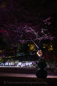 Illuminated Winter Wonderland by night-15