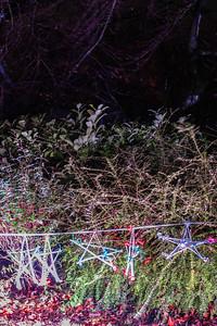 Illuminated Winter Wonderland by night-2