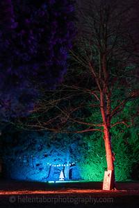 Illuminated Winter Wonderland by night-26