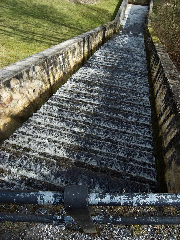 The 'race' at Sunnydale Reservoir