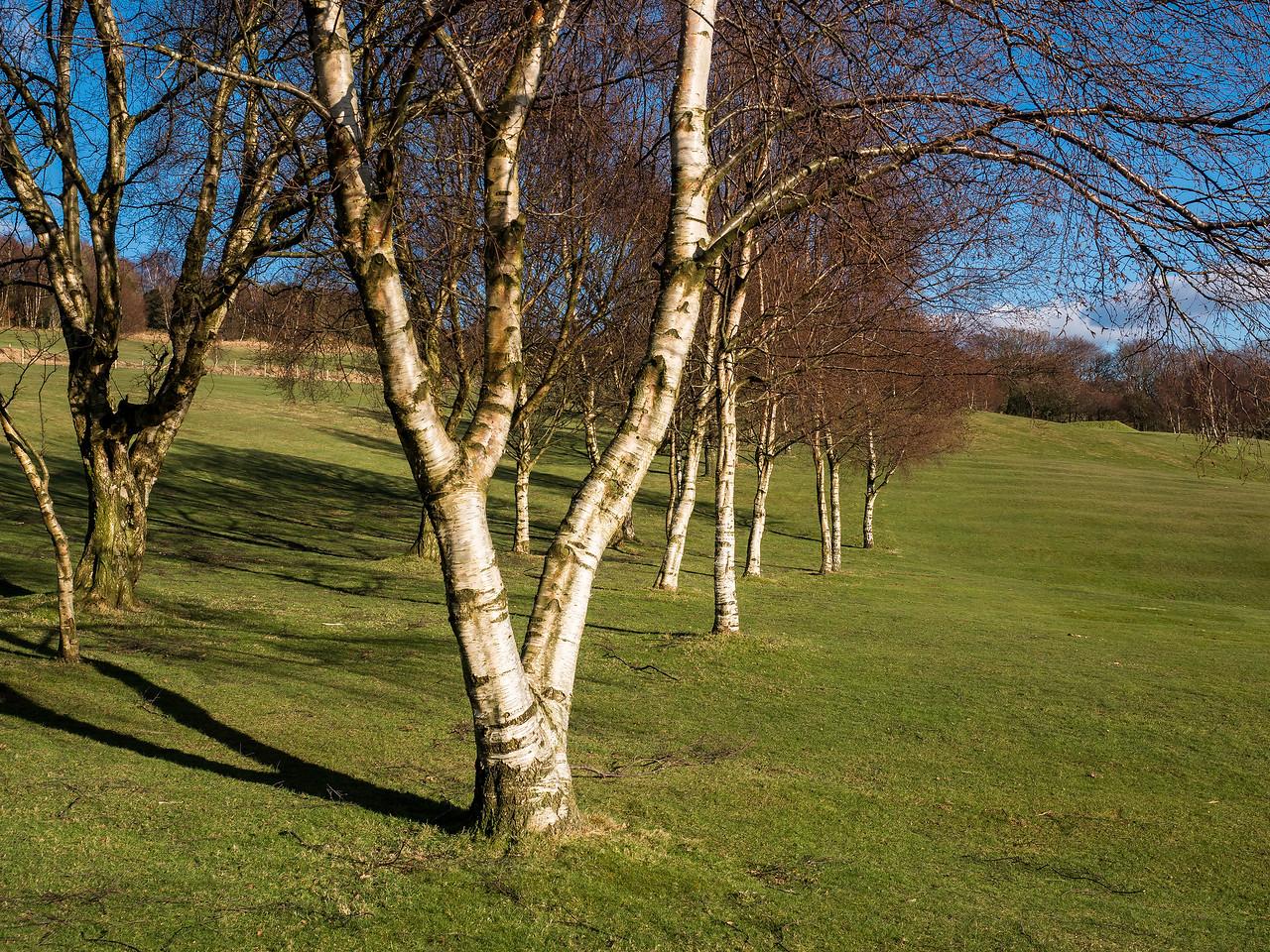 Riddlesden Golf Course
