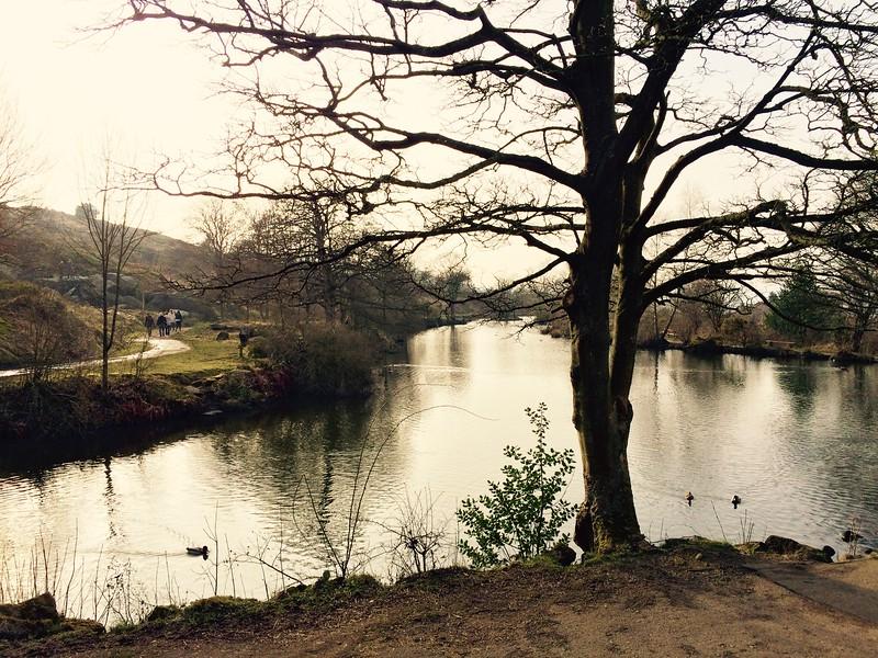 Ilkley Pond