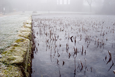Freezing foggy morning at East Riddlesden Hall
