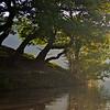 Overhanging trees and sunbeams between Silsden and Kildwick