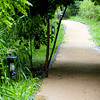 Pathways  to walk around the property