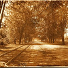 """Historic photo provided by North Ridgeville Historical Society <br> Center Ridge Road west of Avon-Belden Road (now Route 83), looking west about  1910. The tracks on the left (south) side of the dirt road were the Cleveland & Southwestern """"Green Line"""" electric trolley car (interurban) tracks, running between Cleveland and Elyria, and points south and west, from 1895 to 1931. The huge trees, planted in 1821 by the town's poineers who settled here in 1810, once formed a restful """"canopy"""" over Center Ridge, but they're mostly gone now."""
