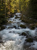 Alec Creek, Gifford Pinchot NF