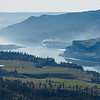 Columbia River Gorge and Lyle Washington viewed from near Catherine Creek