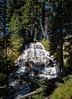 Umbrella Falls, Mount Hood N.F.