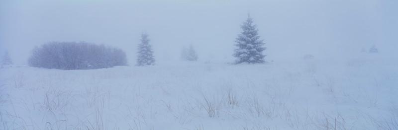 Moorland in winter