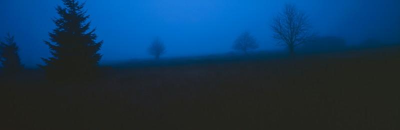 Moorland at dusk