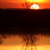 cottonwood slough sunset