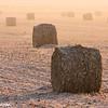 frosty sunrise bales