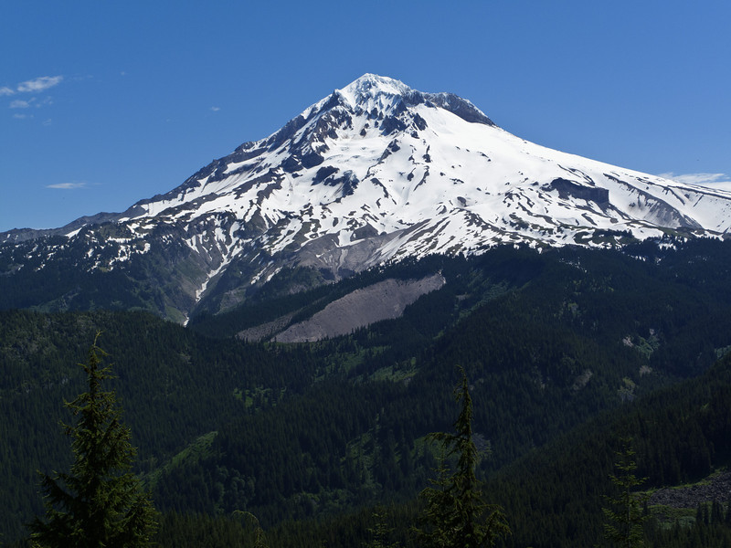 Mount Hood seen from East Zigzag summit