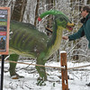 Eric Bonzar—The Morning Journal<br /> Lorain County Metro Parks volunteer and geologist Jon Reichel dusts the snow from a Parasaurolophus at the Carlisle Reservation Visitor Center, 12882 Diagonal Road,LaGrange, April 7, 2017. From April 8-May 7, visitors can experience the Metro Parks' dinosaur exhibit, for a fee of $3 per person. Children under 3 years old are free. The exhibit is open from noon to 6 p.m., daily.