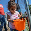 Eric Bonzar—The Morning Journal<br /> Three-year-old Evalina Chavez fills her bucket with water.