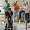 """Eric Bonzar—The Morning Journal<br /> Justin Banaska and """"Fluff"""" compete in the fowl race at the Lorain County Fair, Aug. 26, 2016."""