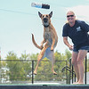 """Eric Bonzar—The Morning Journal<br /> Belgian Malinois """"Elektra"""" launches after her toy during a DockDogs practice run with handler and trainer Crystal McClaran, of Cape Coral, Fla., Aug. 26, 2016."""