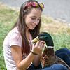 """Eric Bonzar—The Morning Journal<br /> Nicole Maitino, 12, of LaGrange, and hangs out with her 4-year-old Rouen duck """"Jelly Bean"""" before competing in the fowl race at the Lorain County Fair, Aug. 26, 2016."""