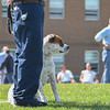 """Eric Bonzar—The Morning Journal<br /> An inmate works on the """"sit"""" and """"stay"""" commands with his trainee dog Sept. 15, 2016."""