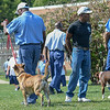 Eric Bonzar—The Morning Journal<br /> Don Hitchens, trainer for Friendship Animal Protective League, watches and assesses progress as inmates walk their trainee dogs in the yard of the Grafton Correctional Institution, Sept. 15, 2016. The dogs walk side-by-side, in packs, to hone their socialization skills.