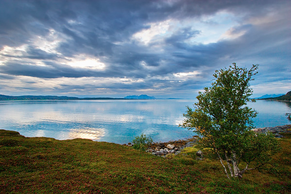 Grass covered beach in northern Norway