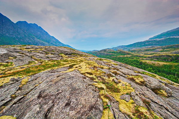 Lichen covered rocks on the coastal fjell