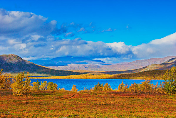 Bright autumn day at the shore of lake Torneträsk
