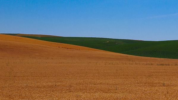 Washington - Palouse Hills