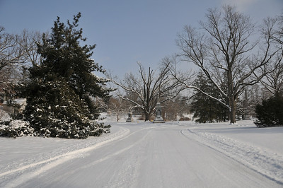 Spring Grove Winter