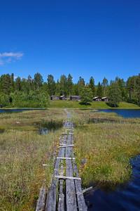 Bodsjön vid Östansjö fäbodarn en vacker sommardag. Wooden gangplank resting on floating hook mosses over a forest lake in Östansjö, Örnskölsviks kommun, Västernorrland, Sverige