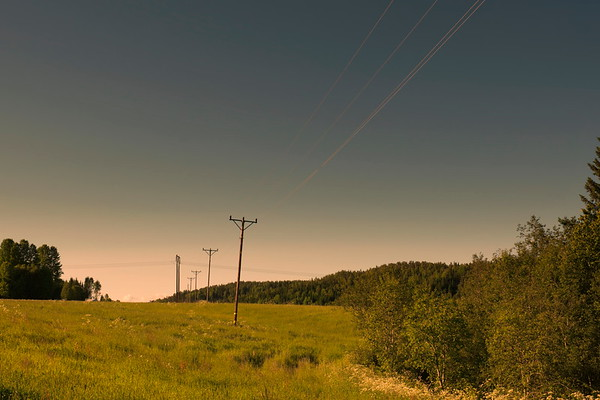 Power poles crossing a green meadow