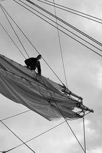 Skepp Trekronor i Örnsköldsvik 2013 -  Seaman loosening a sail - monochrome