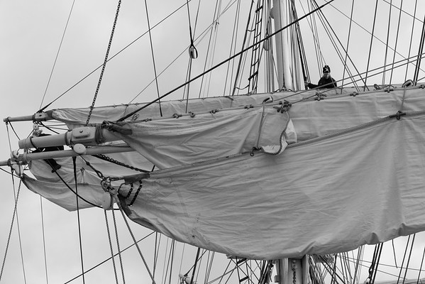 Skepp Trekronor i Örnsköldsvik 2013 -  Mariner working in the rigging of a brig - monochrome