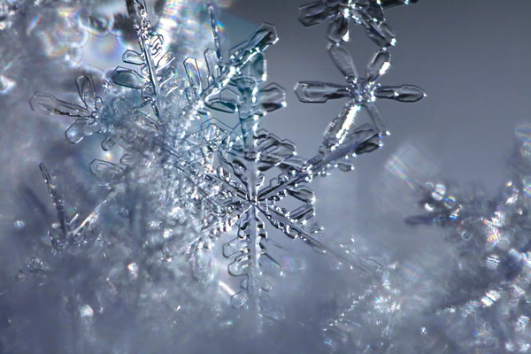 Snöflinga i närbild - Extreme close up of a snowflake