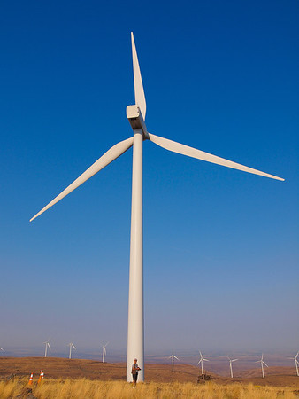Wild Horse Wind Farm, Kittitas, East WA