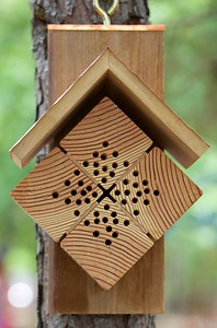Orchard Mason Bee house
