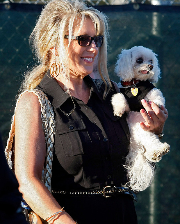 . Karen Sundstrom from Redondo Beach holds her dog Enzo prior to the Tour d\'Elegance in Pebble Beach on August 15, 2013.  (Vern Fisher/Monterey County Herald)