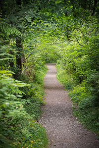This beautiful path leads down to the river from one of the parking lots. The tree canopy provides some wonderful shade for the very short walk down.