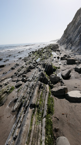 Arroyo Hondo Beach, 2021.