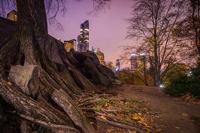 Central Park Bedrock