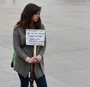 Dearborn Solidarity Vigil for Florida school shooting victims