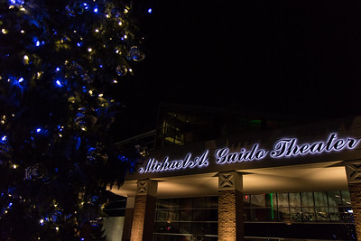 The City of Dearborn held its Annual Christmas Tree Lighting Ceremony & Sing-Along on Monday, December 5, 2016 at the Ford Community and Performing Arts Center. Photo by Debbie Malyn for the Press & Guide.