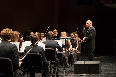 The Dearborn High School Orchestra performed at the event. Photo by Debbie Malyn for the Press & Guide.