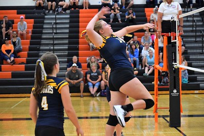 Dearborn High welcomed in Annanpolis on Tuesday night and swept the Cougars in three sets. Photo by Alex Muller - For the Press & Guide