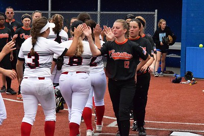 Dearborn Divine Child defeated Center Line by a score of 8-1 on Saturday at Madonna University for the Division 2,  Region 15 championship. In the semifinals,  Divine Child beat Hazel Park 15-0 and Center Line knocked off Detroit CMA 15-0. Photo by Alex Muller - For Digital First Media