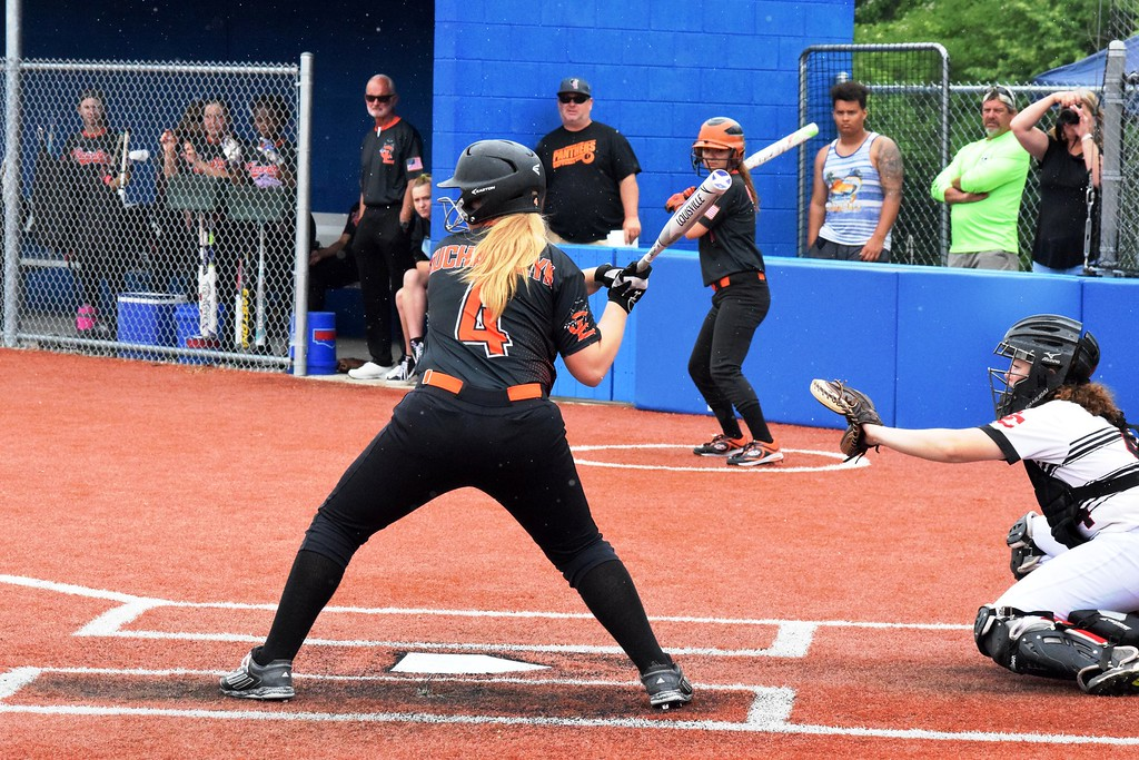 . Dearborn Divine Child defeated Center Line by a score of 8-1 on Saturday at Madonna University for the Division 2,  Region 15 championship. In the semifinals,  Divine Child beat Hazel Park 15-0 and Center Line knocked off Detroit CMA 15-0. Photo by Alex Muller - For Digital First Media