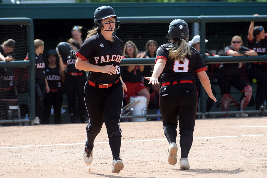 . Divine Child took on South Haven in a Division 2 state semifinal on Thursday at Michigan State University. The Falcons fell to the tough Rams squad by a score of 14-0. Photo by Frank Wladyslawski - The Press & Guide